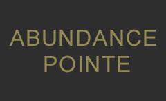 abundance-pointe